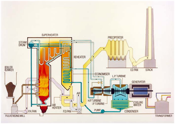 pulverized coal fired boiler in the Performance and risks of advanced pulverized-coal plants iea coal research pulverized-coal fired power plant performance and risks of advanced pul.