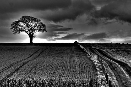 Foto hitam putih lebih keren benarkah
