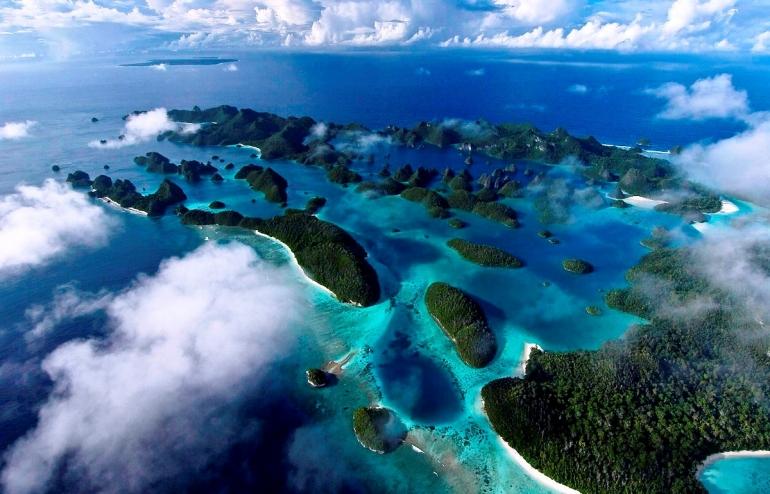 Menjadi Pengusaha Sukses dengan Manfaatkan Kekayaan Laut Indonesia