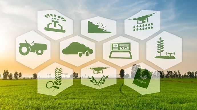 Tantangan Dan Peluang Industri Makanan Dan Minuman Halaman All
