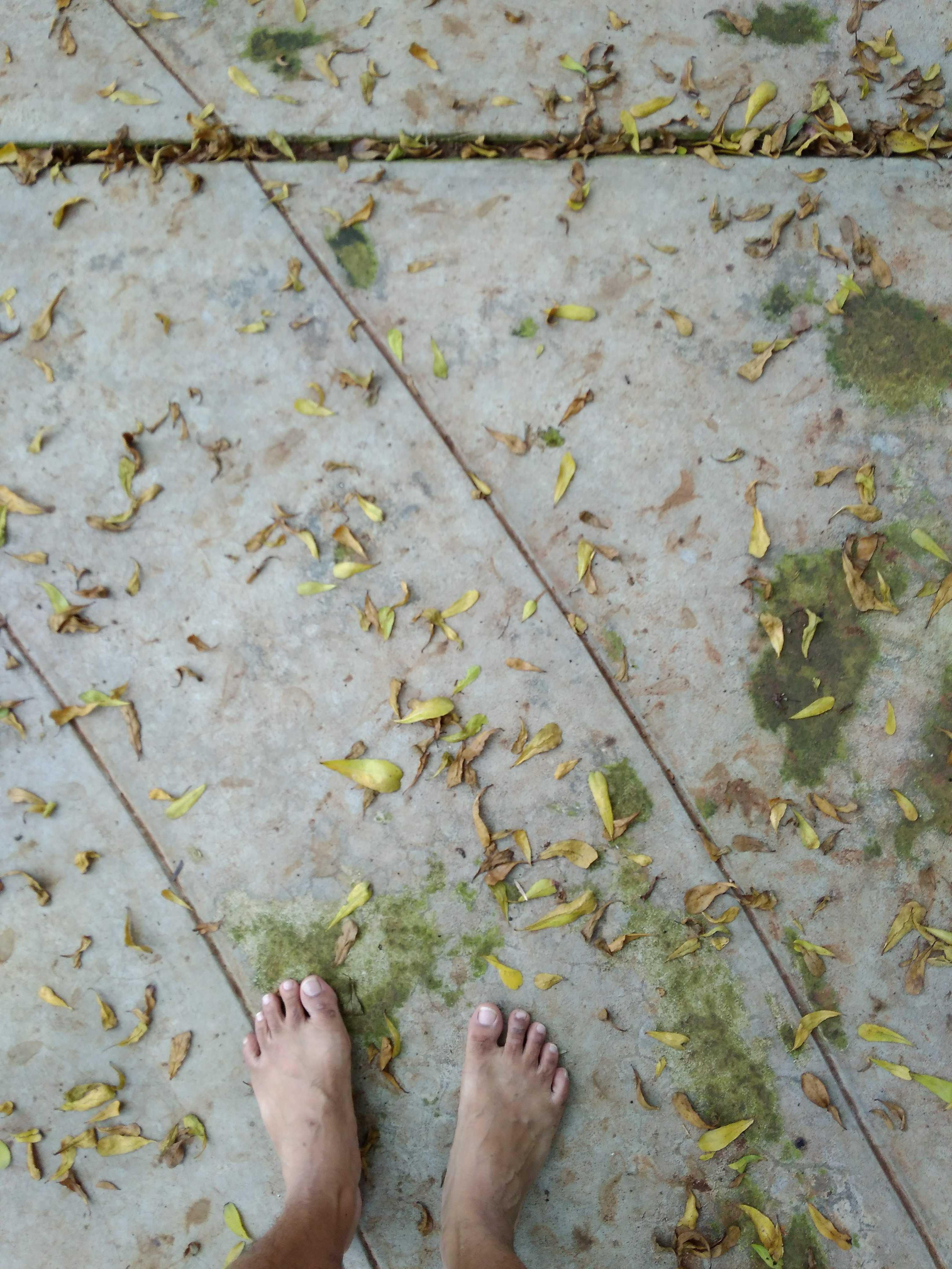 Berjalan tanpa alas kaki sebagai hobi: mengapa bertelanjang kaki berjalan begitu sehat