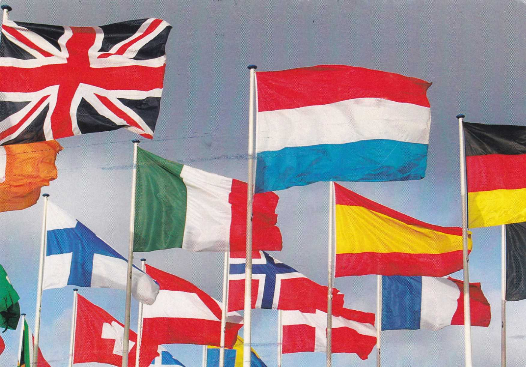 Mengenal Vexil Ogi Ilmu Tentang Bendera Halaman 1