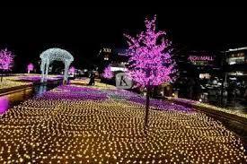 Menikmati Keindahan Bunga Sakura Di Aeon Mall Bsd City Kompasiana Com