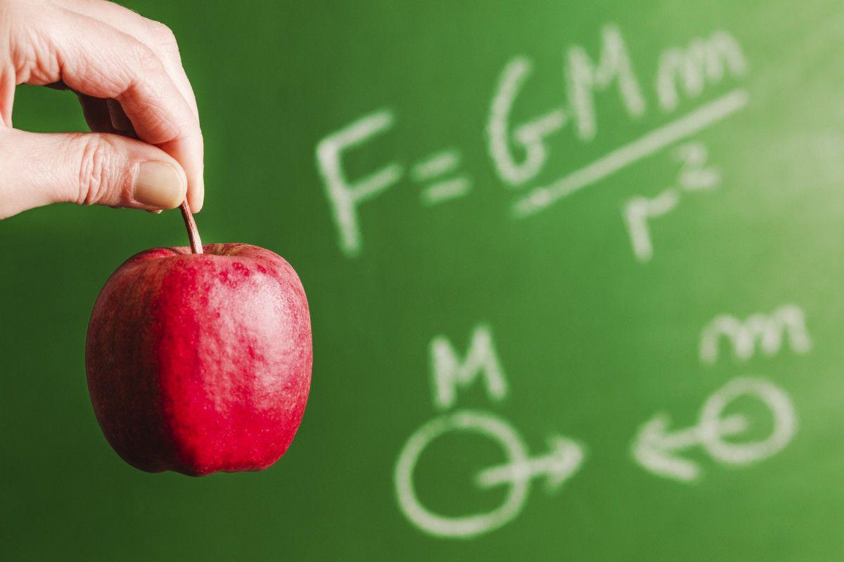 Fenomena Fisika Dalam Kehidupan Sehari Hari Halaman 1 Kompasiana Com