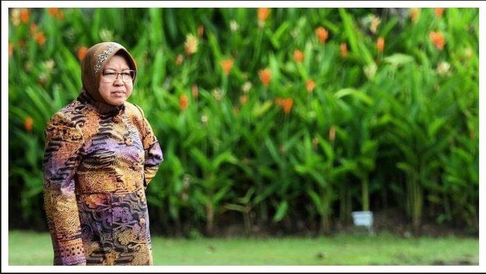 Mendambakan Tri Rismaharini Kader Terbaik Pdip Segera Menjadi Menteri Jokowi Halaman All Kompasiana Com