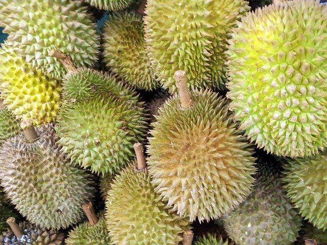 Tips Memilih Buah Durian yang Manis dan Lezat - Kompasiana.com