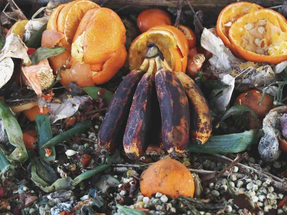 Cara Mengelola Sampah Organik