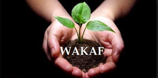 Peran Wakaf sebagai Media Filantropi