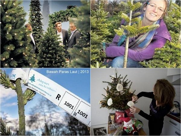 Pohon Natal Pun Diadopsi di Belanda oleh Bawah Paras Laut
