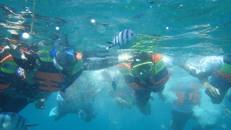 Wisata Belitung 2 Naik Puncak Mercusuar Hingga Tanam