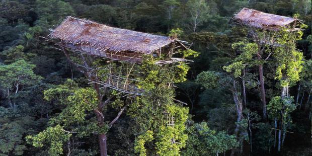 Kagumnya Korea Lihat Alam Papua Indonesia Oleh Syasya Mam Gambar