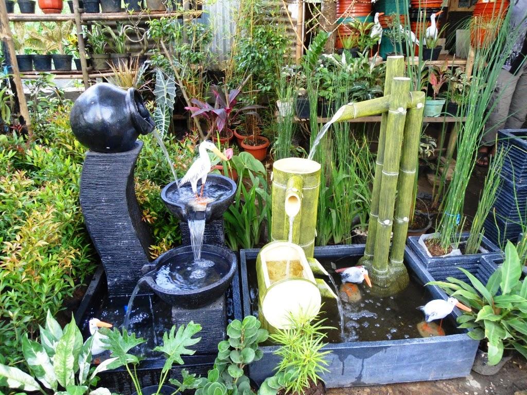 Cara Membuat Kolam Ikan dan Taman Minimalis di Rumah oleh