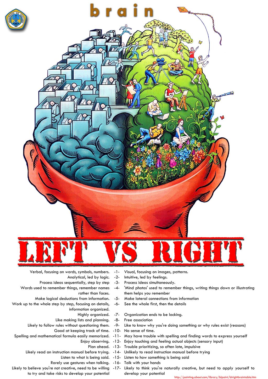 Poster Perbedaan Otak Kanan Dan Otak Kiri Oleh Choiron Kompasiana Com