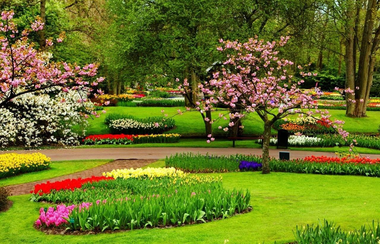 Gambar Ilustrasi Taman Iluszi