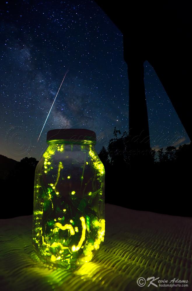 металлы картинки светлячки в банке на траве породами архея нижнего