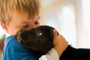 68 Gambar Menyayangi Hewan Dan Tumbuhan Gratis Terbaik